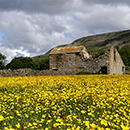 Reeth in North Yorkshire image
